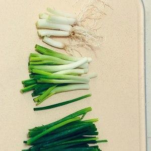 クイックワーカーグリーン1の醤油を添えた油っこい麺の実践測定